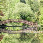 Schlosspark Wolfsgarten