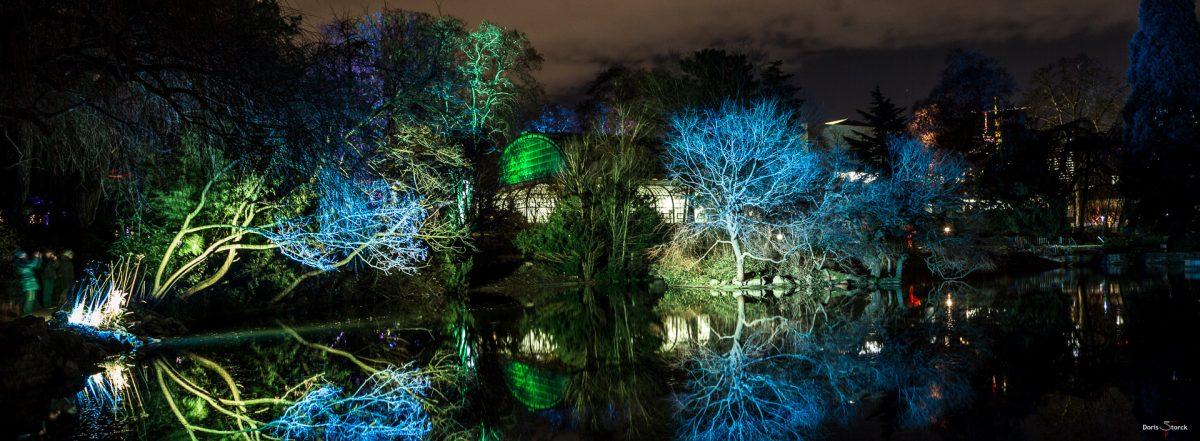 Winterlichter im Palmengarten Frankfurt
