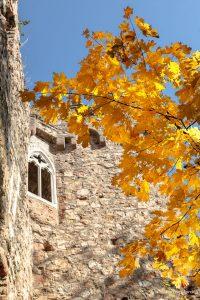 Herbstlaub und Burgmauer - Auerbacher Schloss