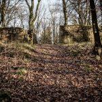 Mauerreste im Wald
