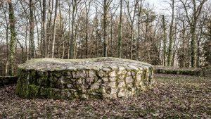 Turmstumpf - Reste des Turmes der Ruine Schnellerts