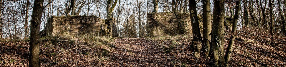 Ruinen der Burg Schnellerts im Odenwald